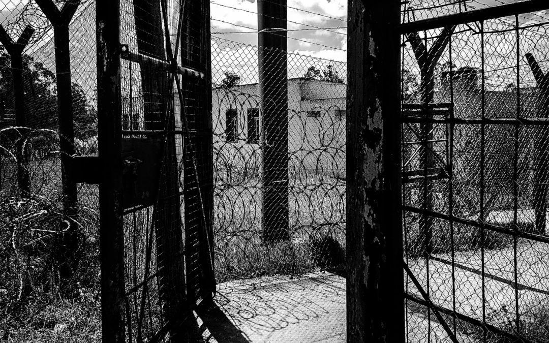 Protocolos de abandono, castigo e indiferencia…
